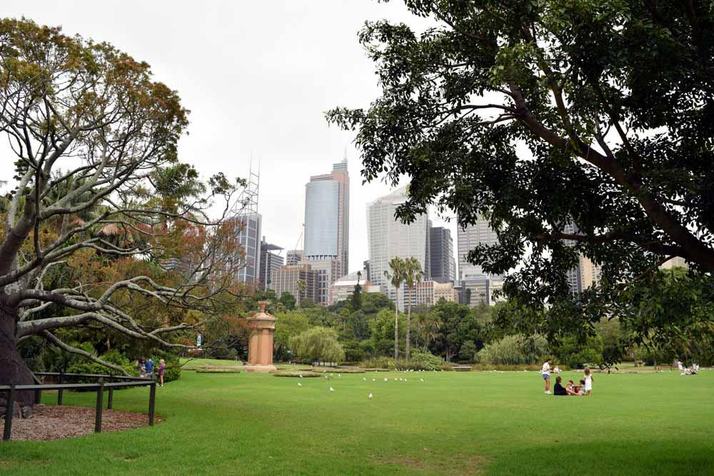 Visiter Sydney et les Royal Botanic Gardens