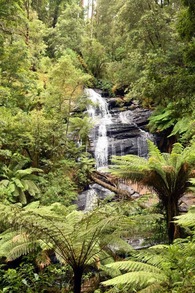 Triplet Falls Australie