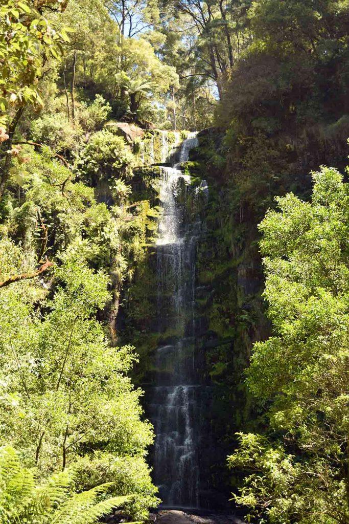 Erskine Falls Australie