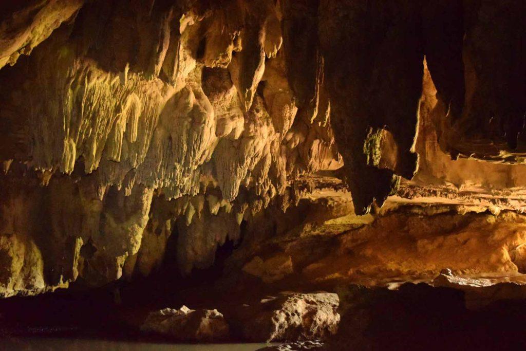 Les Waipu Caves en Nouvelle Zélande