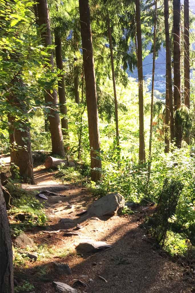 Randonnée Tiki Trail Queenstown