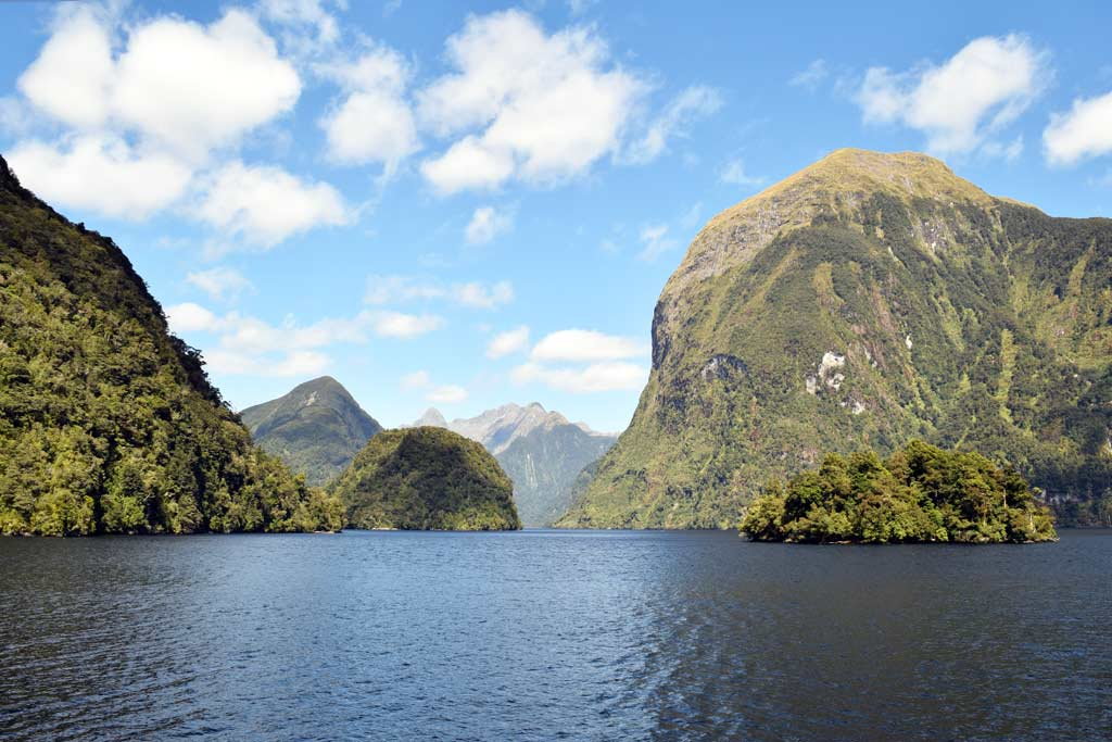 Excursion à Doubtful Sound