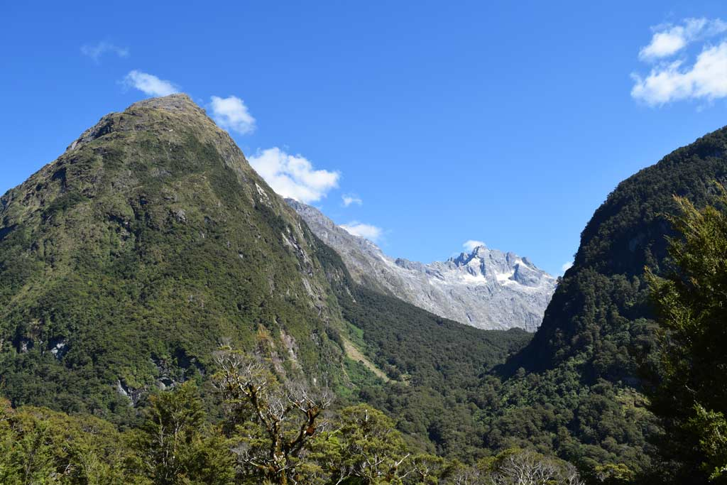 Hollyford Valley Lookout, Route 94