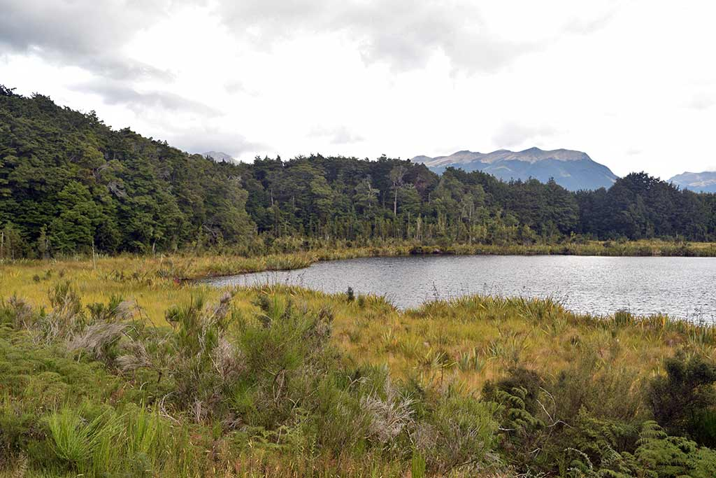Lake Mistletoe, route Te Anau Milford Sound