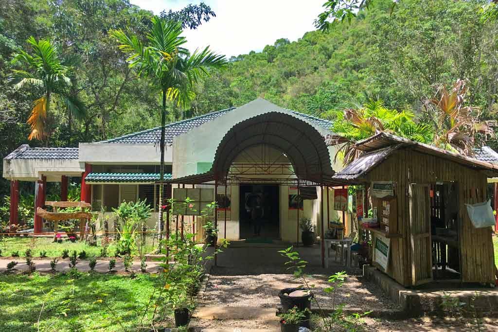 philippines tarsier sanctuary
