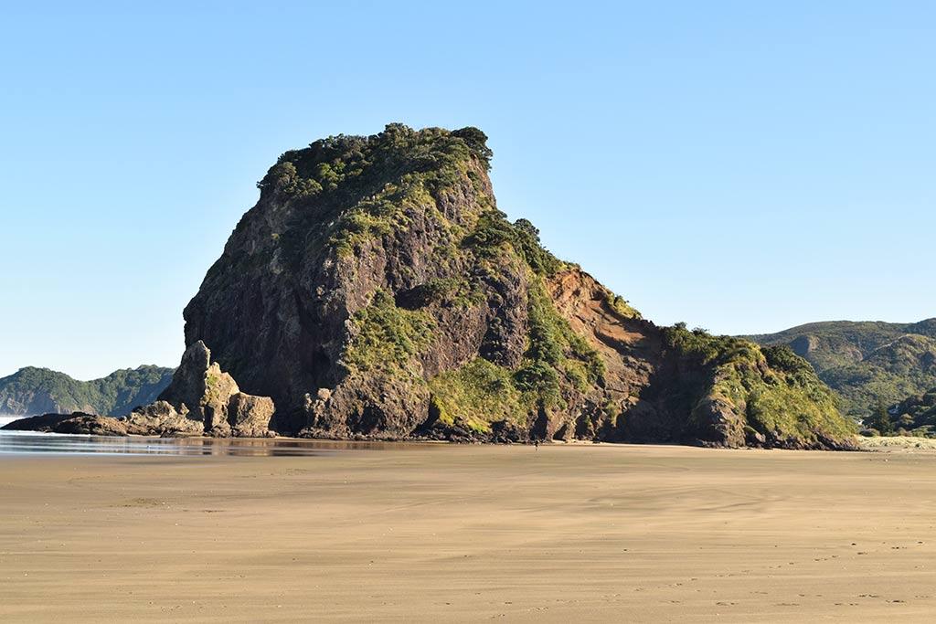 Lion Rock Piha Beach