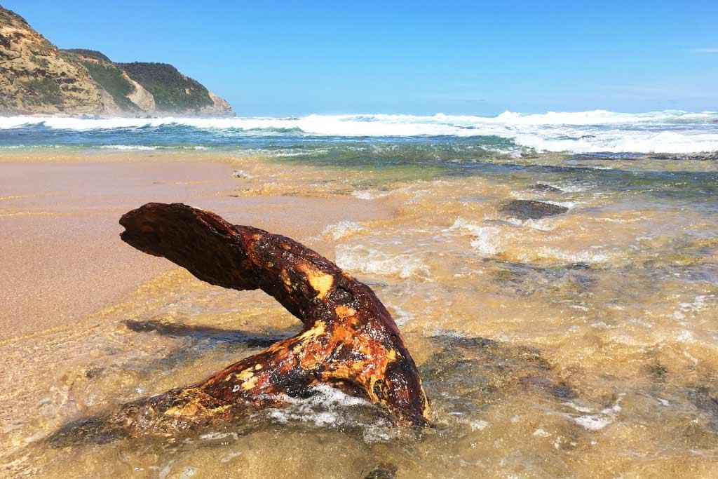 Ancre Wreck Beach