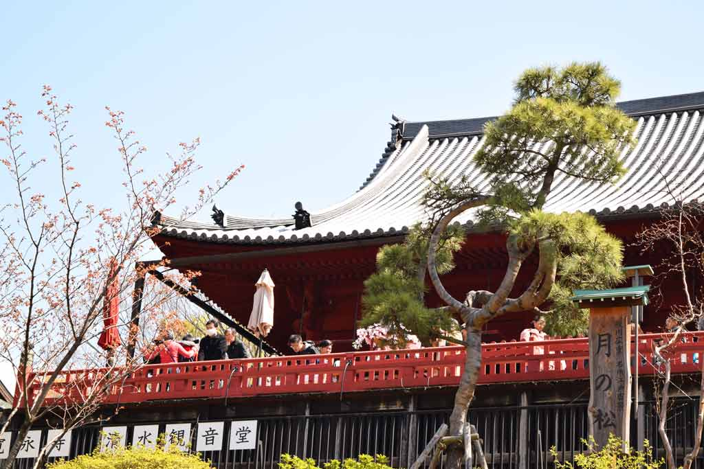Visite Tokyo 5 jours