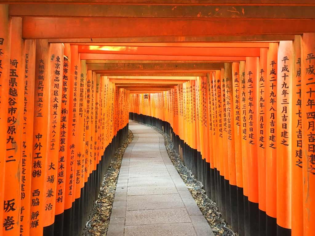 Visiter Kyoto toriis